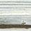 216 Maritimo Pine